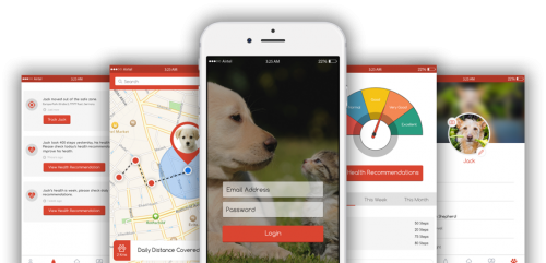 Allianz - Pet Tracker