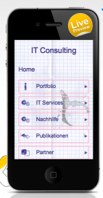 IT Consulting -  Programmierung