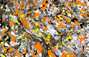 sentinel 2 for agriculture